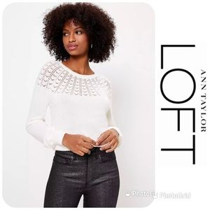 NWT LOFT Pointelle Yoke Sweater Sz M $59.50!